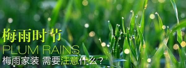 梅雨季节装修.jpg